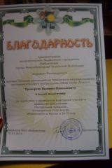 Открытие Года театра в Центральной библиотеке им. Ю. Гагарина г. Новочебоксарск фото 5